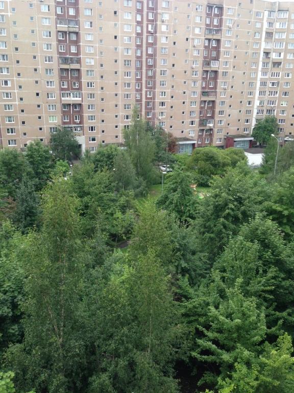 Продажа, 1 к. квартира, Зеленоград, к. 1619